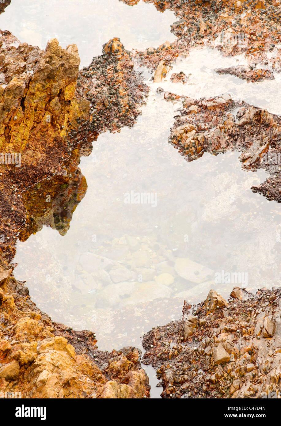 Piscine dans les rochers sur la côte le long de la Garden Route en Afrique du Sud. Photo Stock