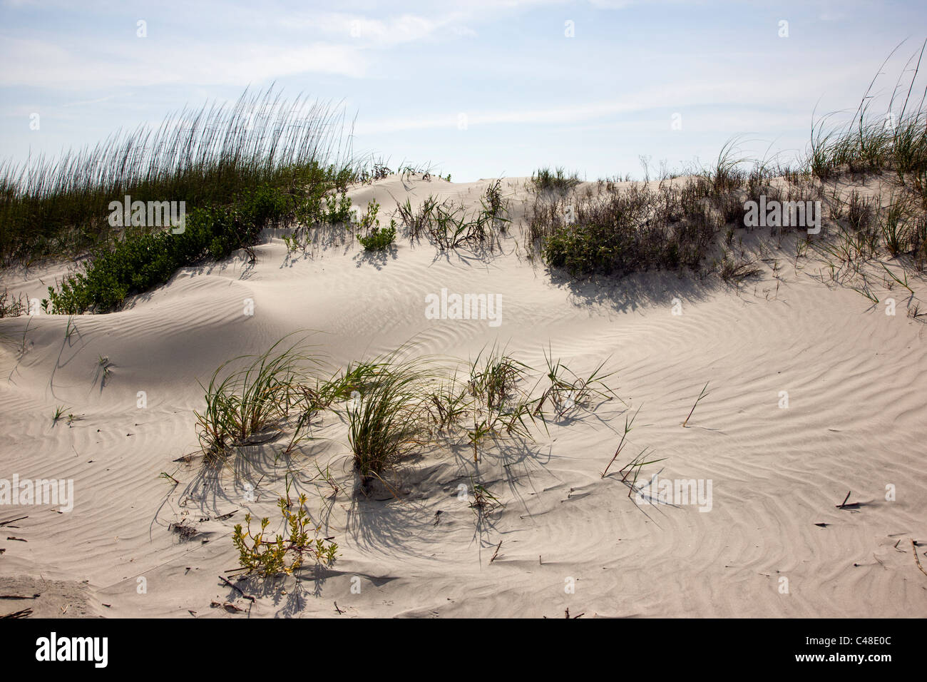 Belle plage de Seabrook Island, près de Charleston, Caroline du Sud, USA Photo Stock