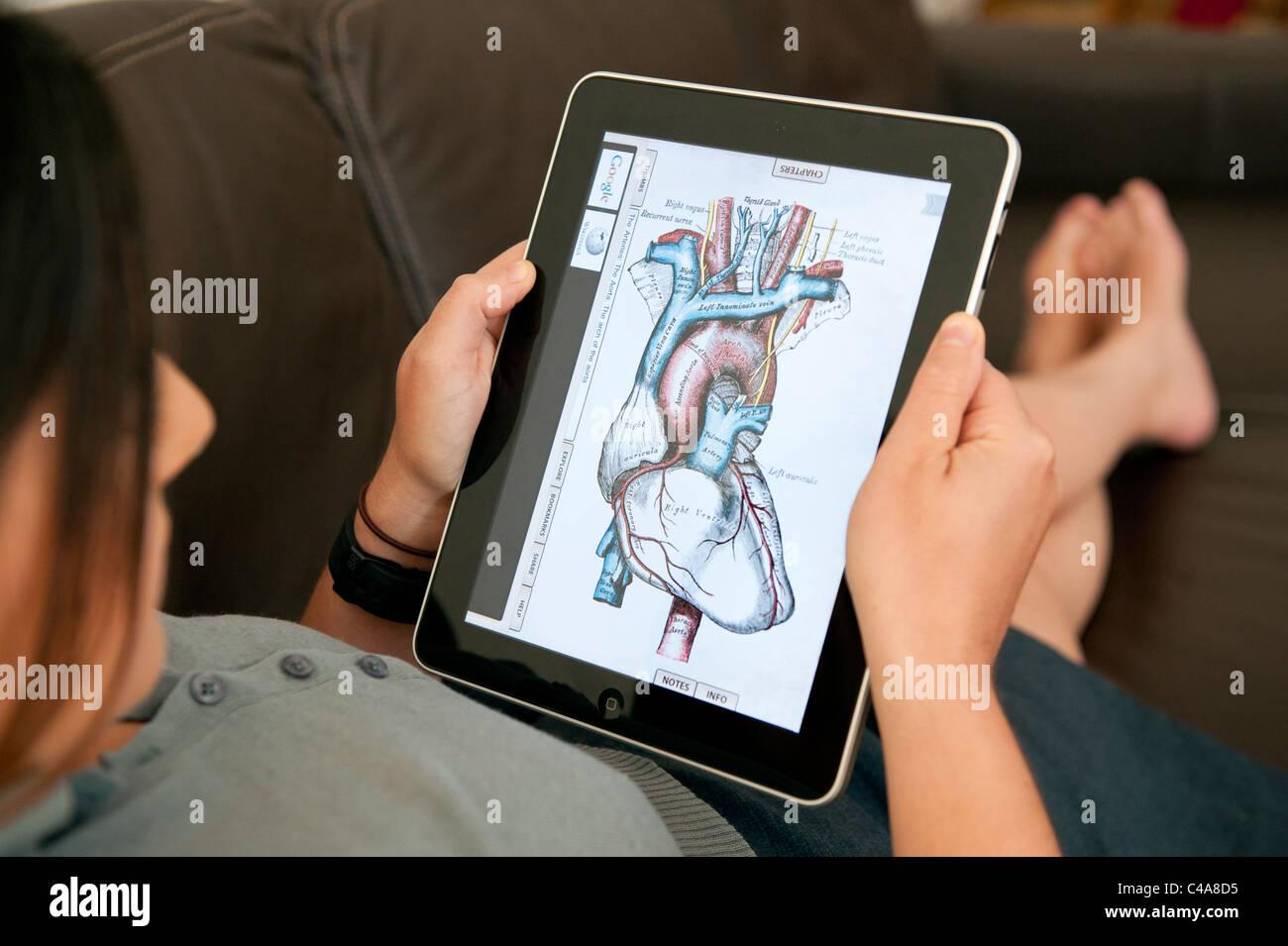 Ziemlich Ipad Anatomie App Fotos - Anatomie Von Menschlichen ...