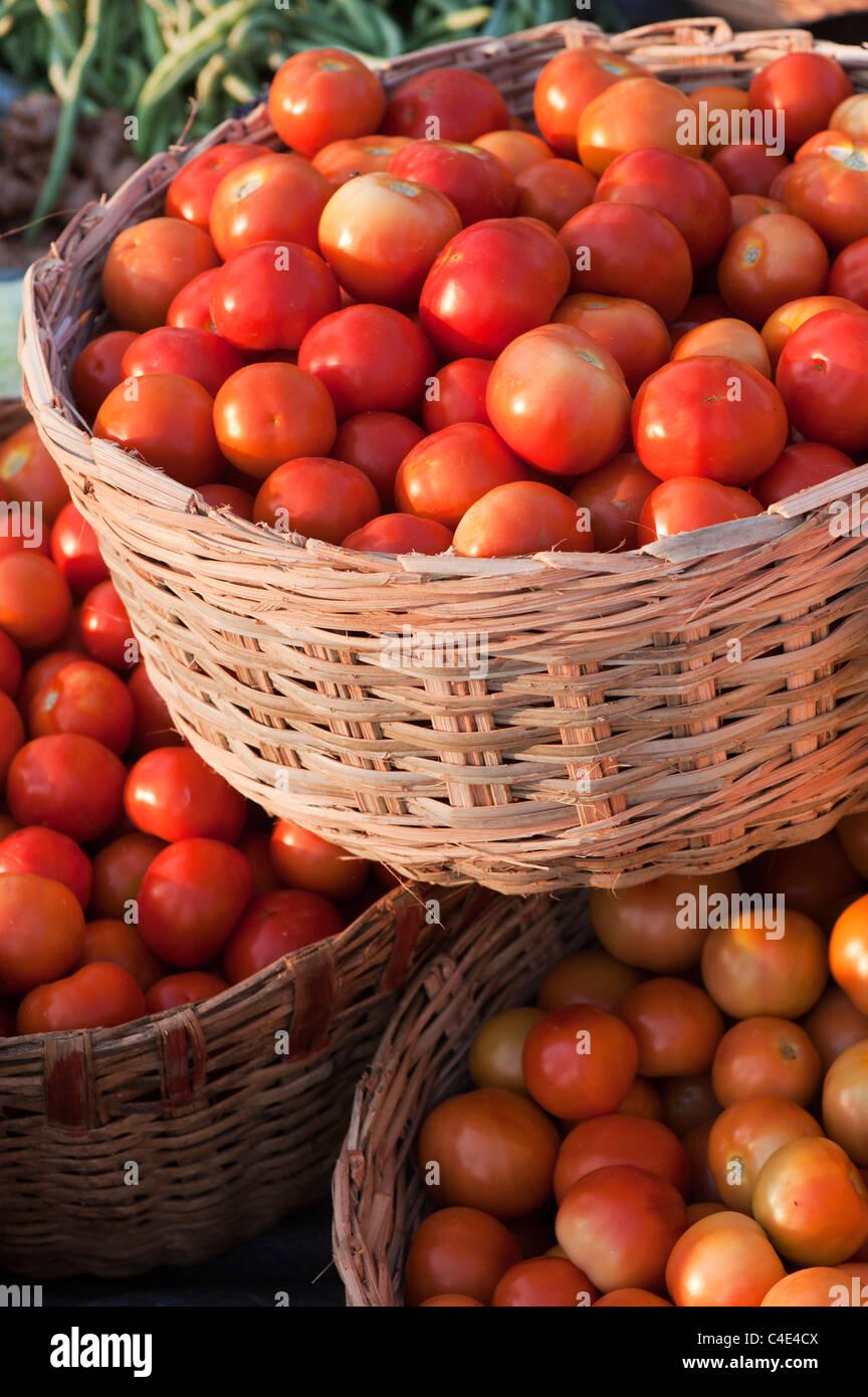 Les tomates dans des paniers à un marché indien Photo Stock
