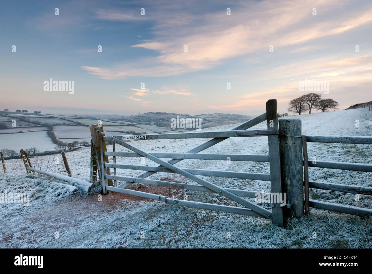 Frost couverts barrière en bois et champ, Raddon Hills, Devon, Angleterre. Hiver (décembre) 2010. Photo Stock