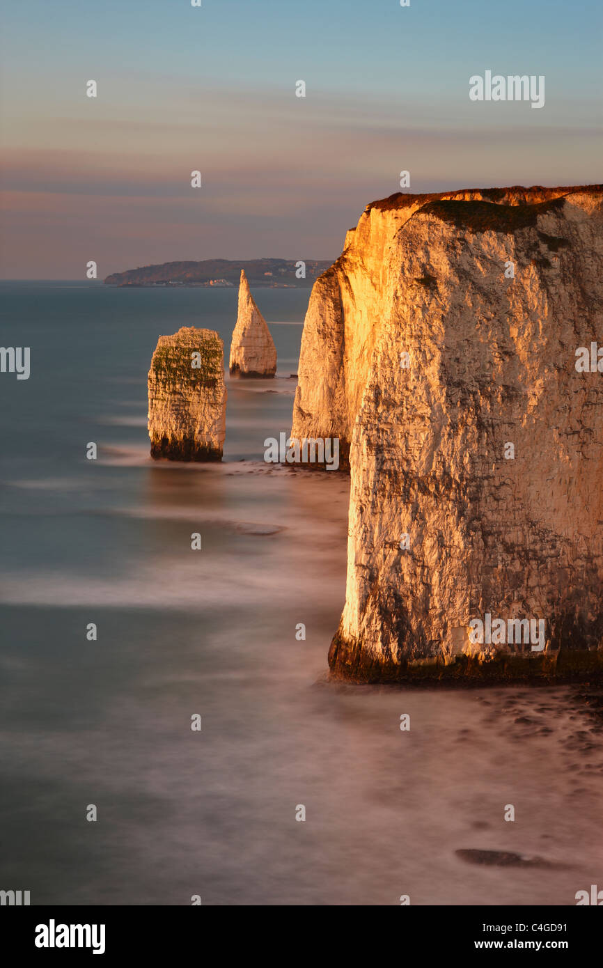 Old Harry Rocks, Handfast Point, Studland, Jurassic Coast, Dorset, Angleterre Photo Stock