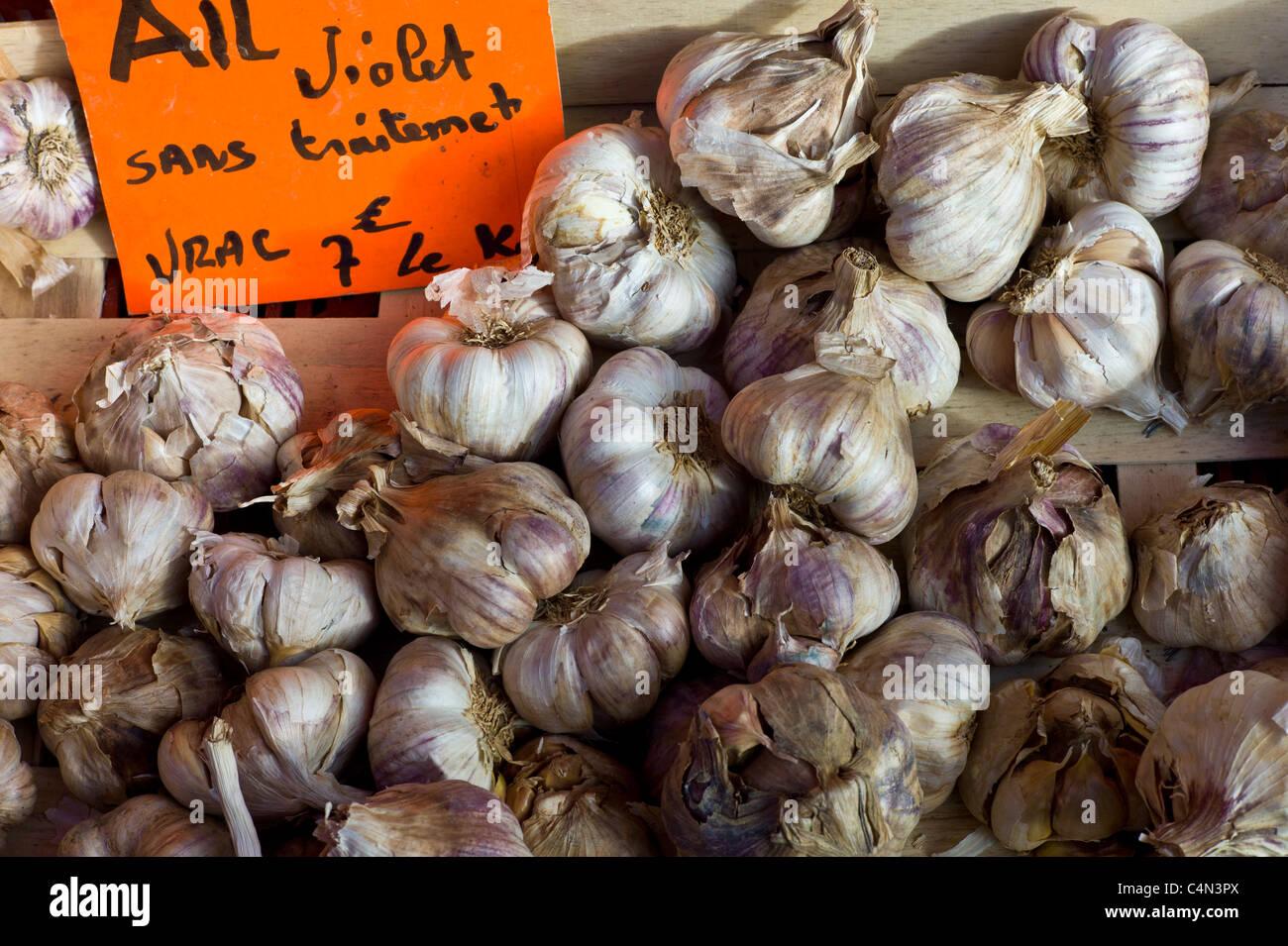 L'ail frais violet ail, Allium sativum, au marché alimentaire en région de Bordeaux Banque D'Images