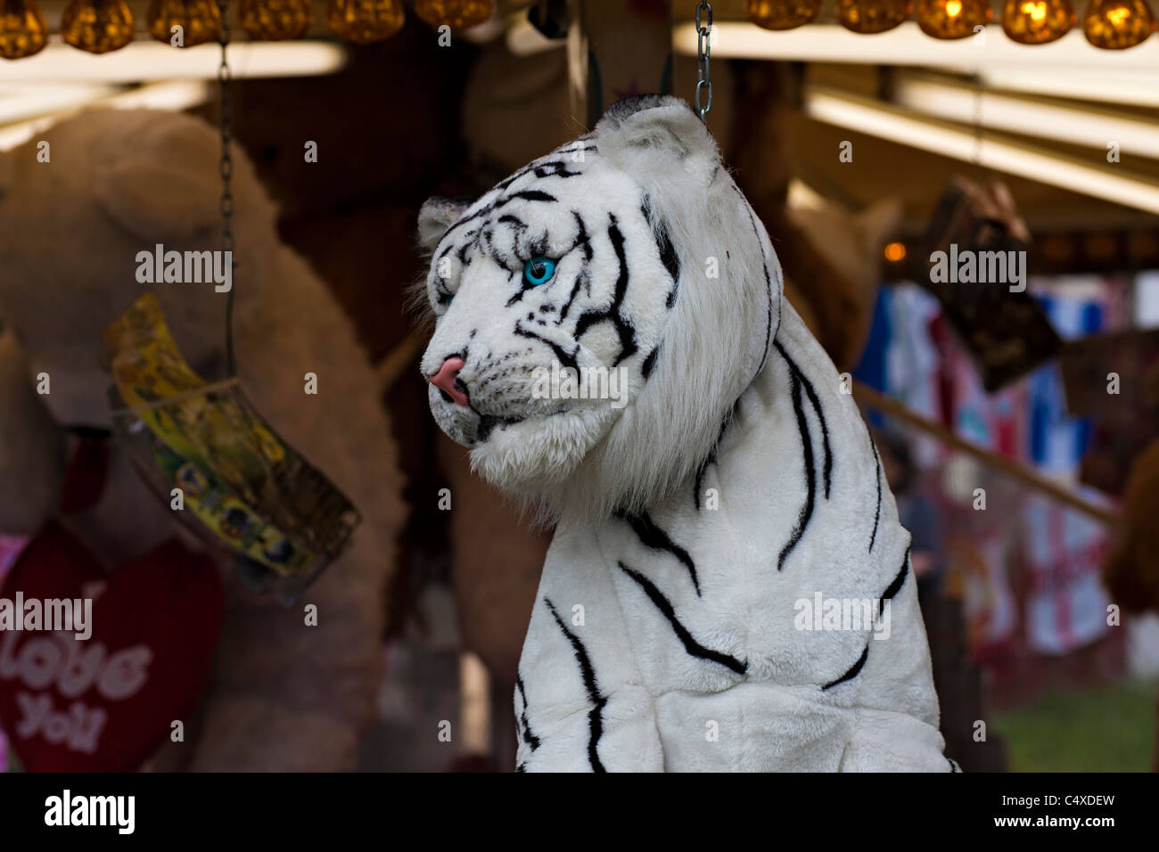 Une peluche tigre est un prix dans le cadre d'un stand à l'Hoppings à Newcastle upon Tyne Photo Stock
