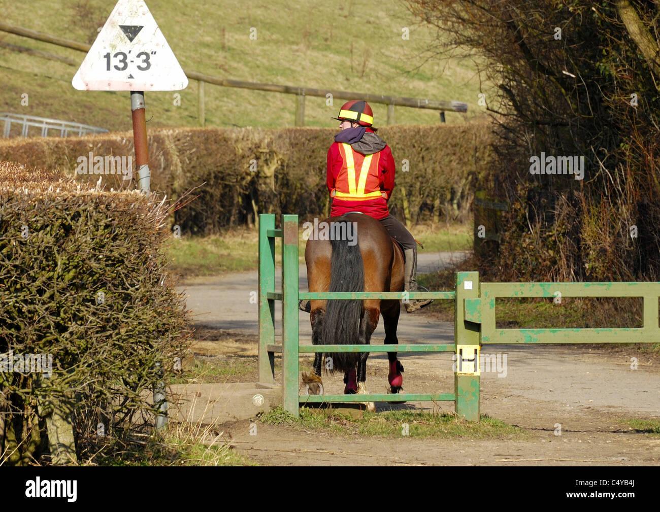 Vue arrière du cheval et du cavalier vêtements de sécurité passant signe la hauteur et passant Photo Stock