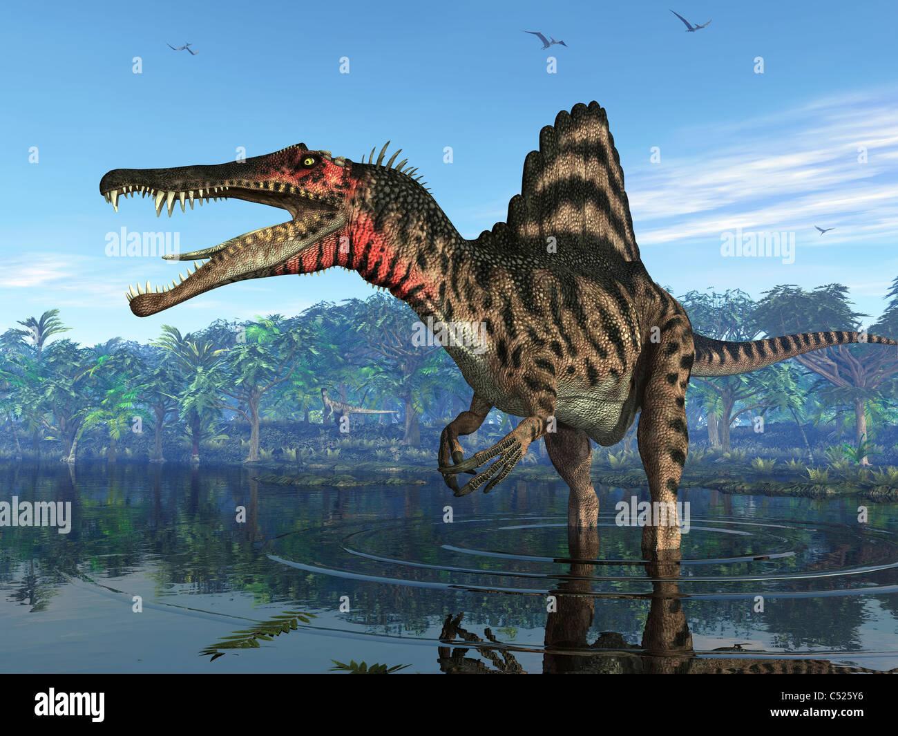 Un Spinosaurus cherche sa prochain repas. Photo Stock