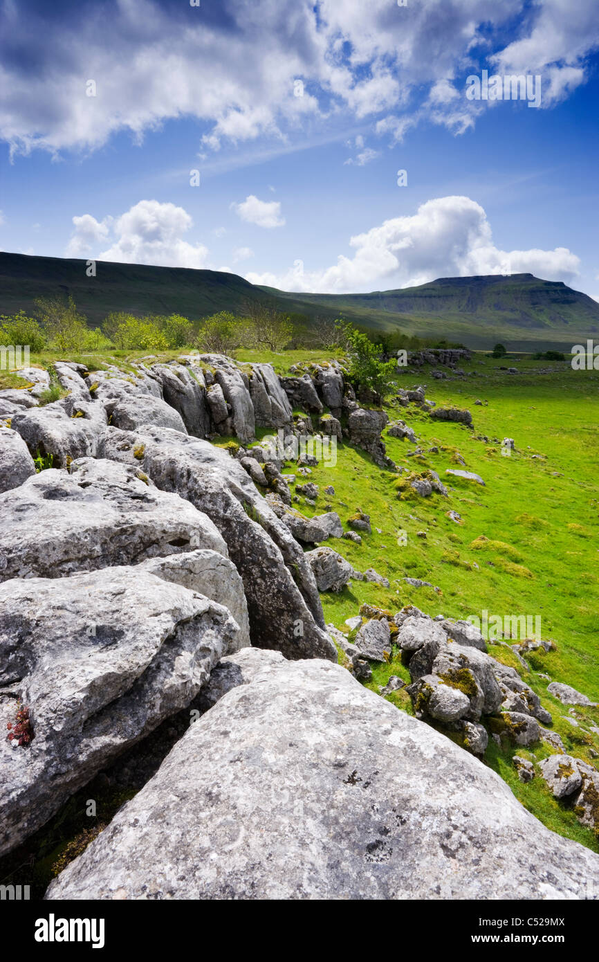 Lapiez à Chapelle-le-Dale, au-delà Ingleborough, North Yorkshire, UK. Photo Stock