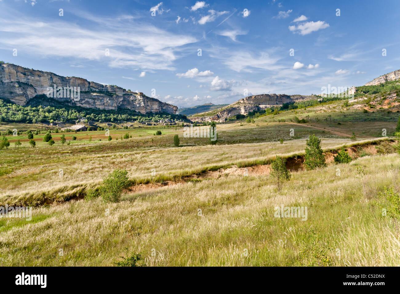 Prairie dans la Noguera, Catalogne, Espagne Photo Stock