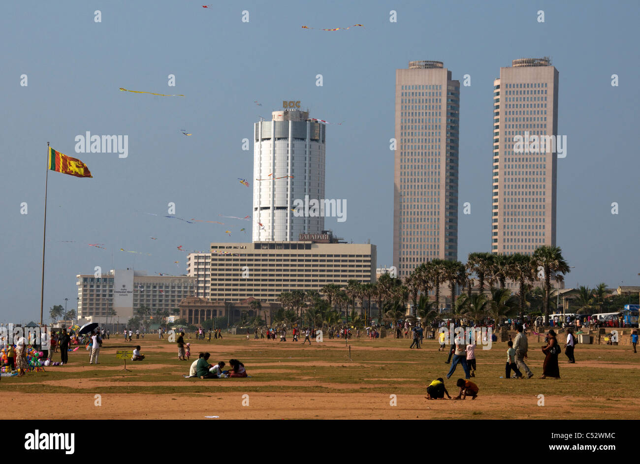 Cerfs-volistes Galle Face Green Colombo Sri Lanka Banque D'Images