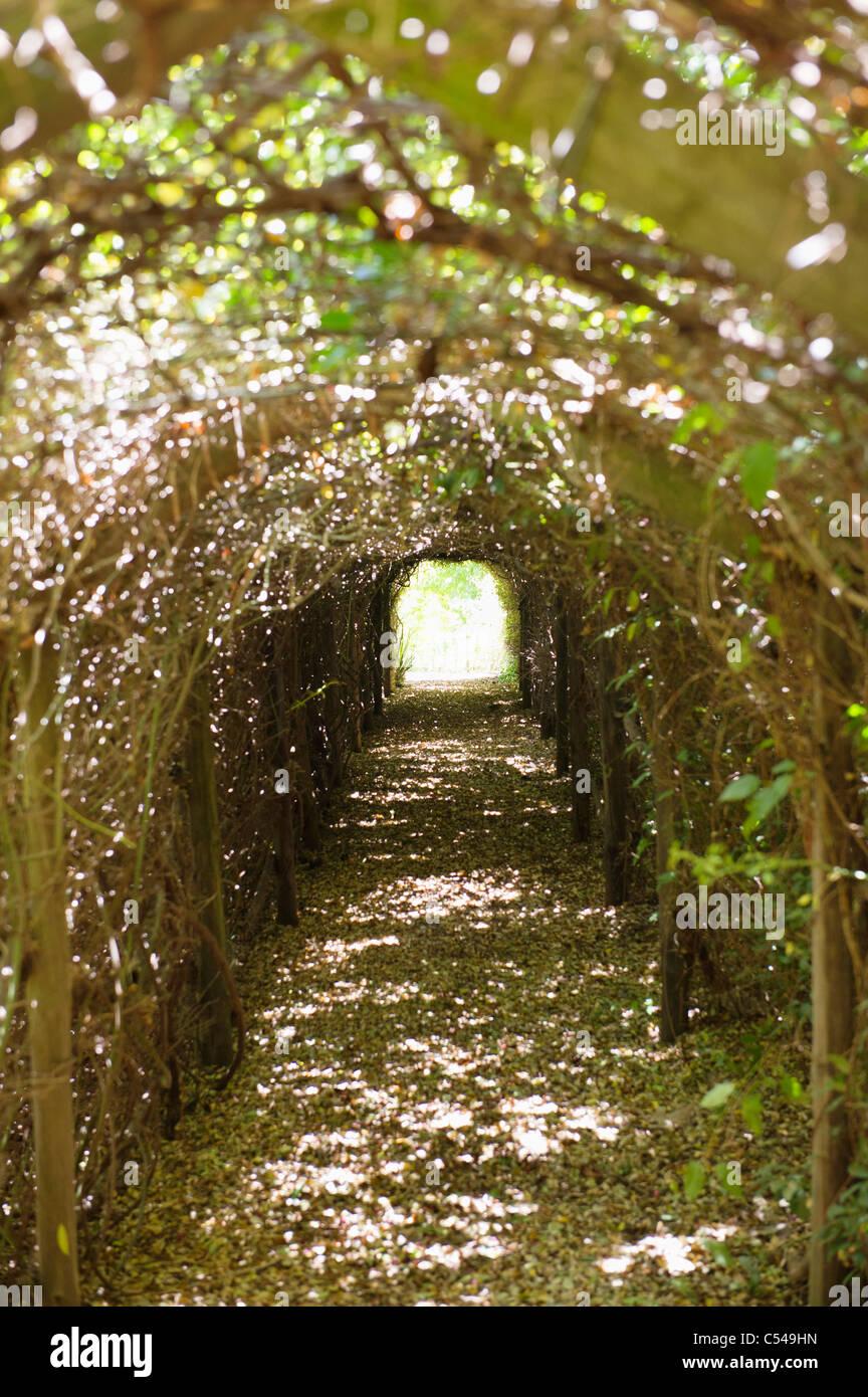 Sentier étroit en passant par un tunnel Photo Stock