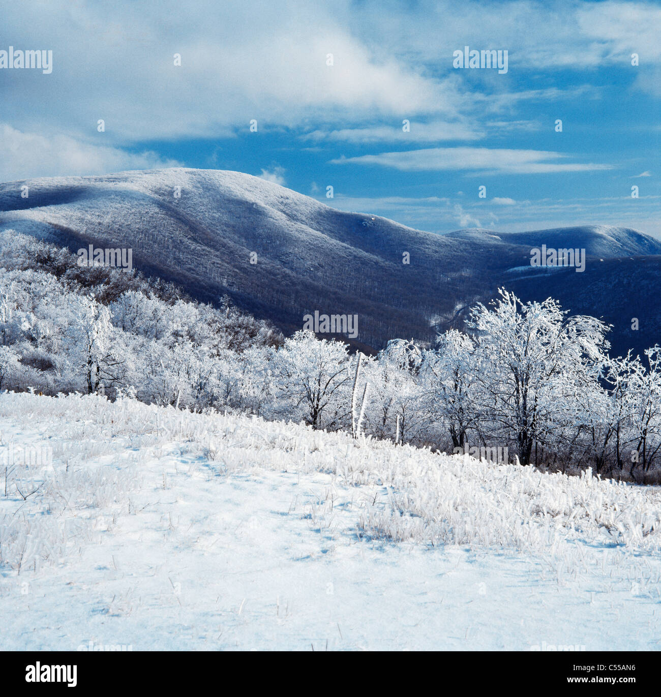 Blue Ridge Mountains Virginia USA Banque D'Images