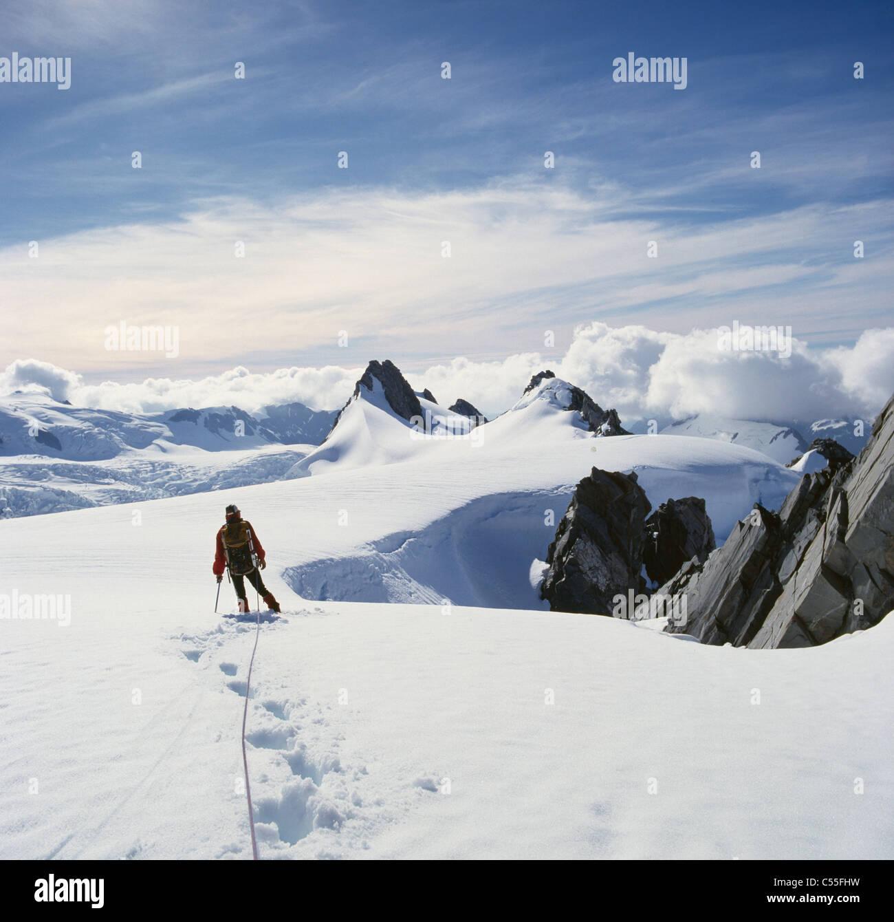 Nouvelle Zélande, île du Sud, l'Afrique du Westland, Alpes du Sud, à travers la neige balades touristiques Banque D'Images