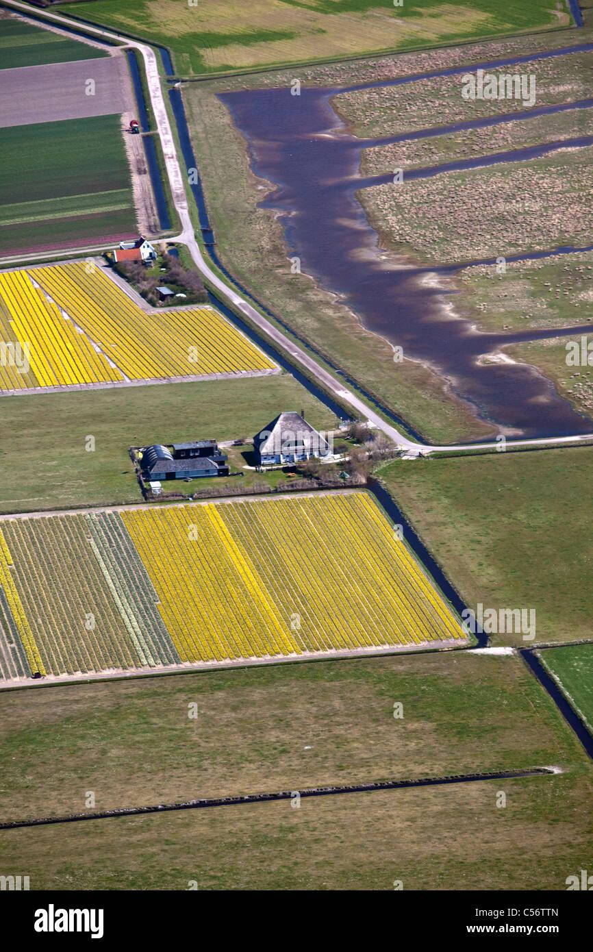 Les Pays-Bas, Callantsoog, vue aérienne de fermes. Photo Stock