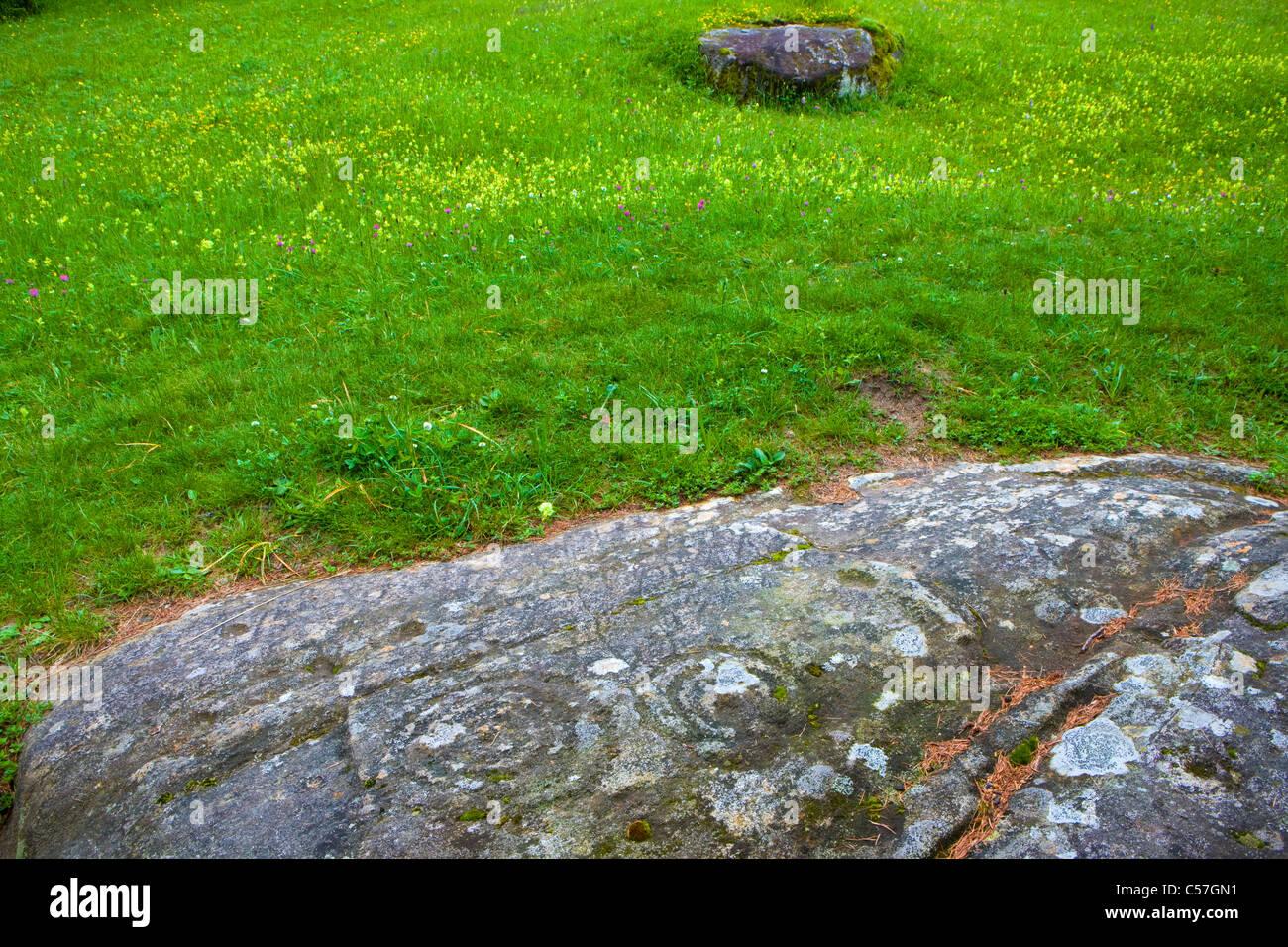 Carschenna, falaise, dessins, Suisse, Europe, canton des Grisons, Grisons, Domleschg, rock, falaise, petroglyph, Photo Stock