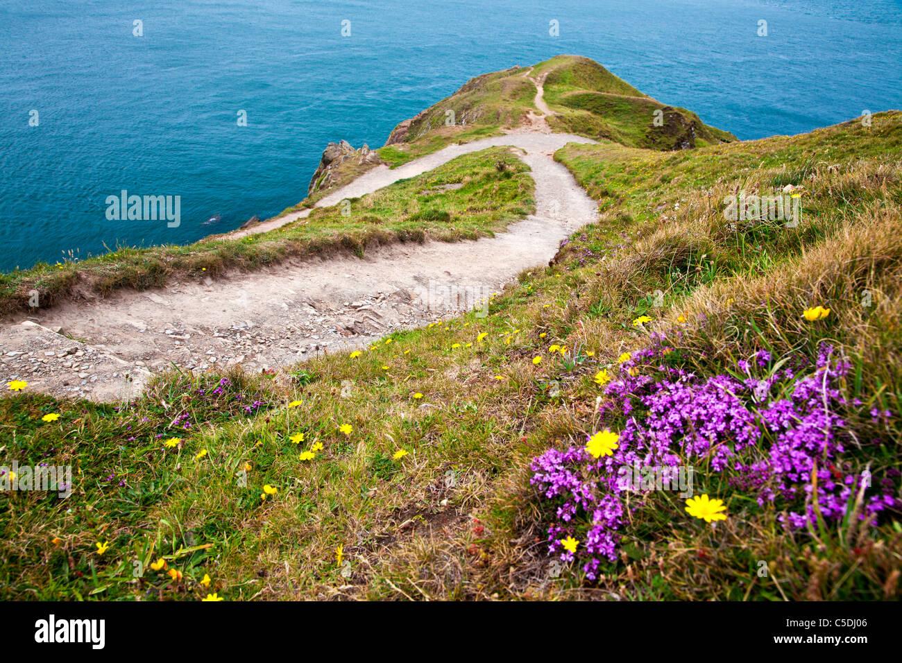 Voir d'un point Baggy pointe près de Croyde, North Devon, England, UK Photo Stock