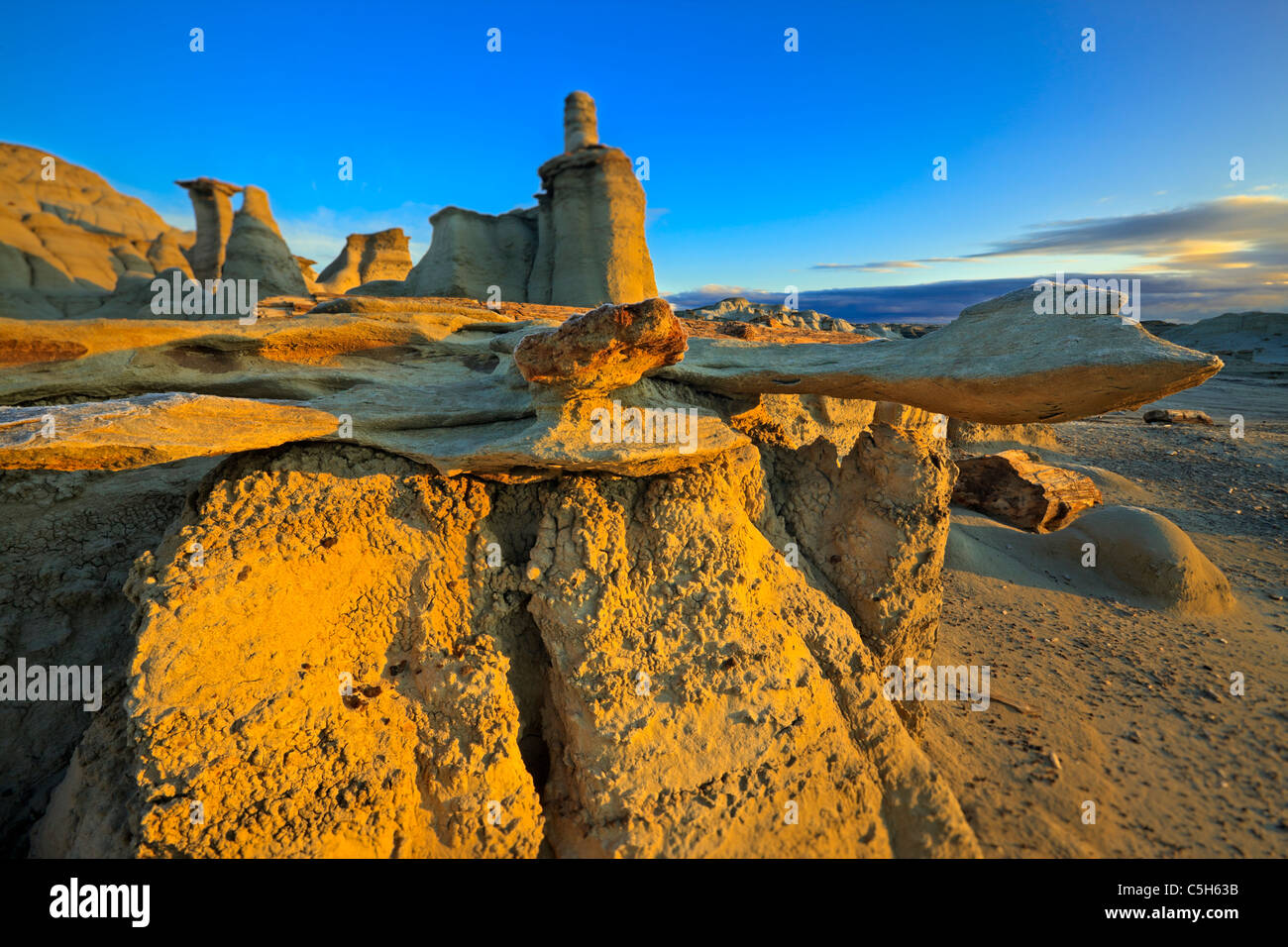 Bisti & De Na Zin Désert, New Mexico, USA Photo Stock