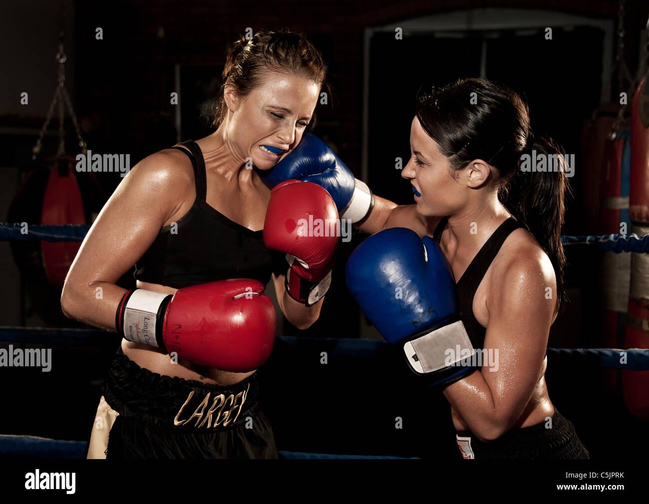 Boxeurs féminins au combat Photo Stock