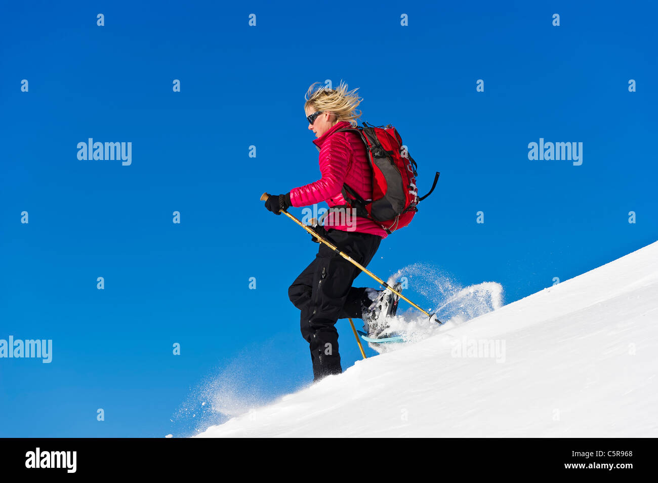 Abaissement rapide de la raquette à neige profonde. Photo Stock