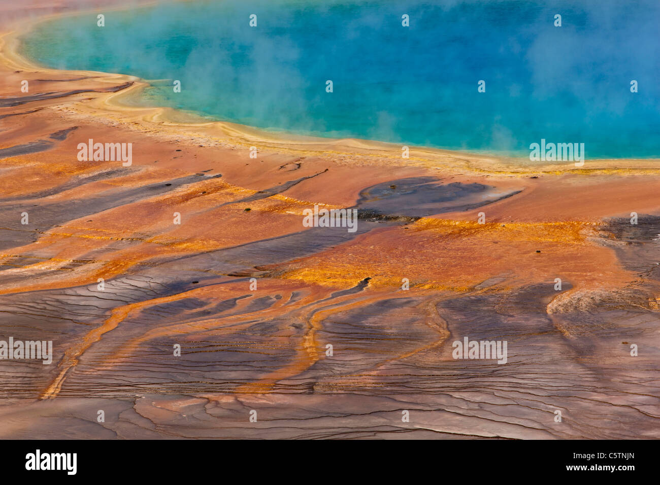USA, Wyoming, Yellowstone National Park, Grand Prismatic Spring Banque D'Images