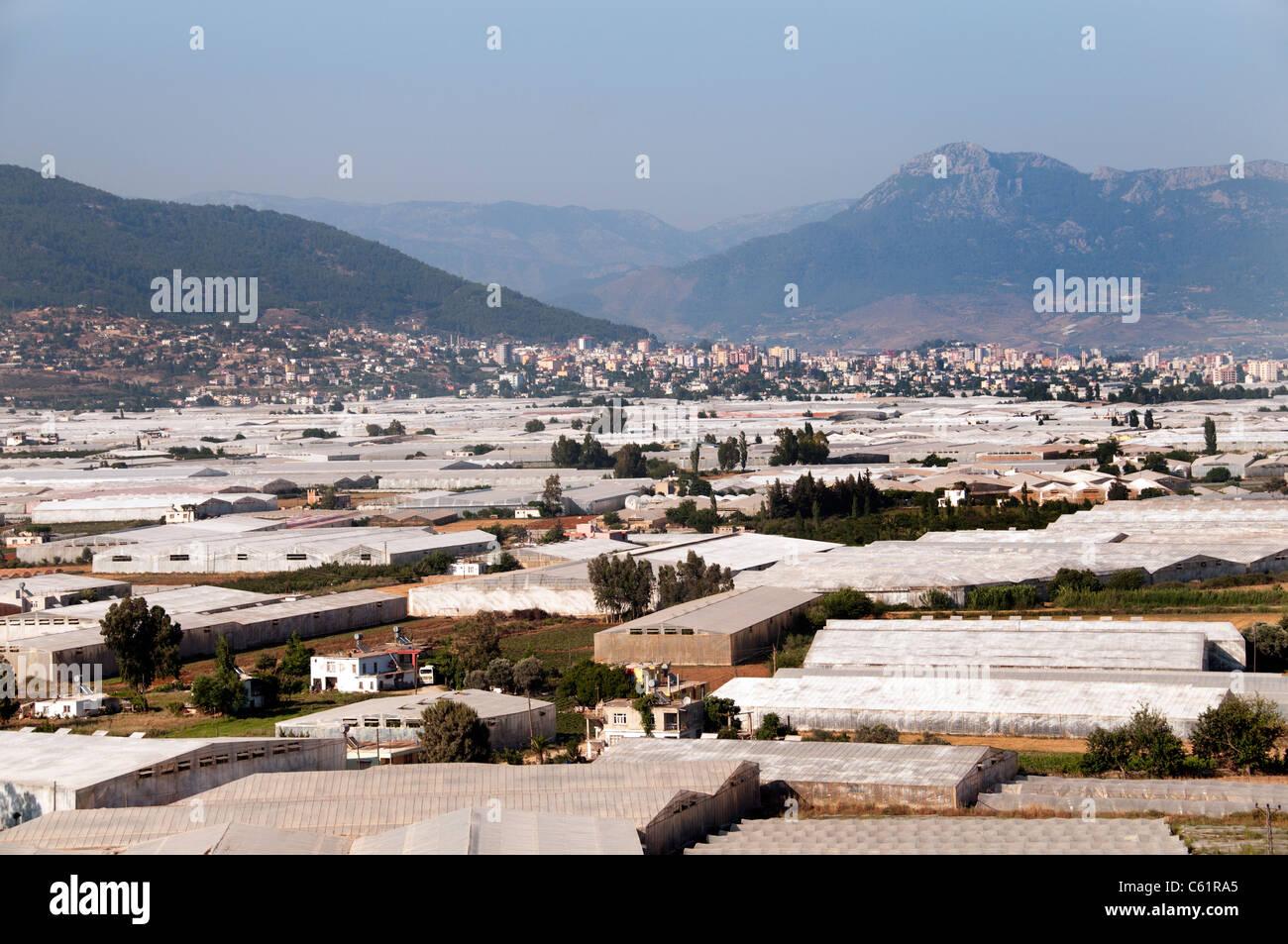 À effet de serre de la Turquie du sud Agriculture Farm Photo Stock