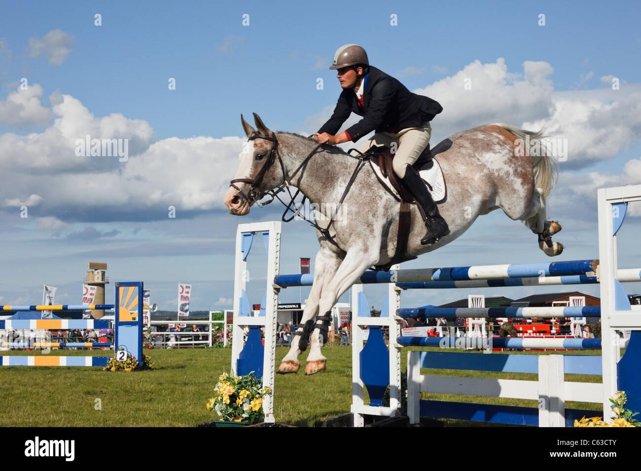 Le Nord du Pays de Galles, Royaume-Uni. Événement international de saut à cheval et jockey sautant Photo Stock