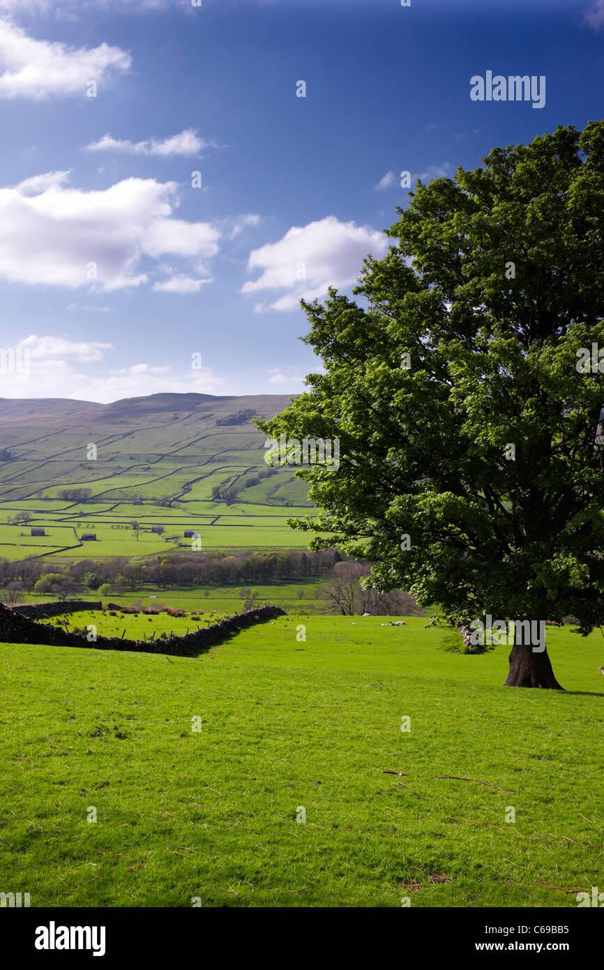 À la recherche du village de calage Busk voyage Raydale au village de Marsett et dit s'est passé au-delà. Yorkshire Dales Banque D'Images
