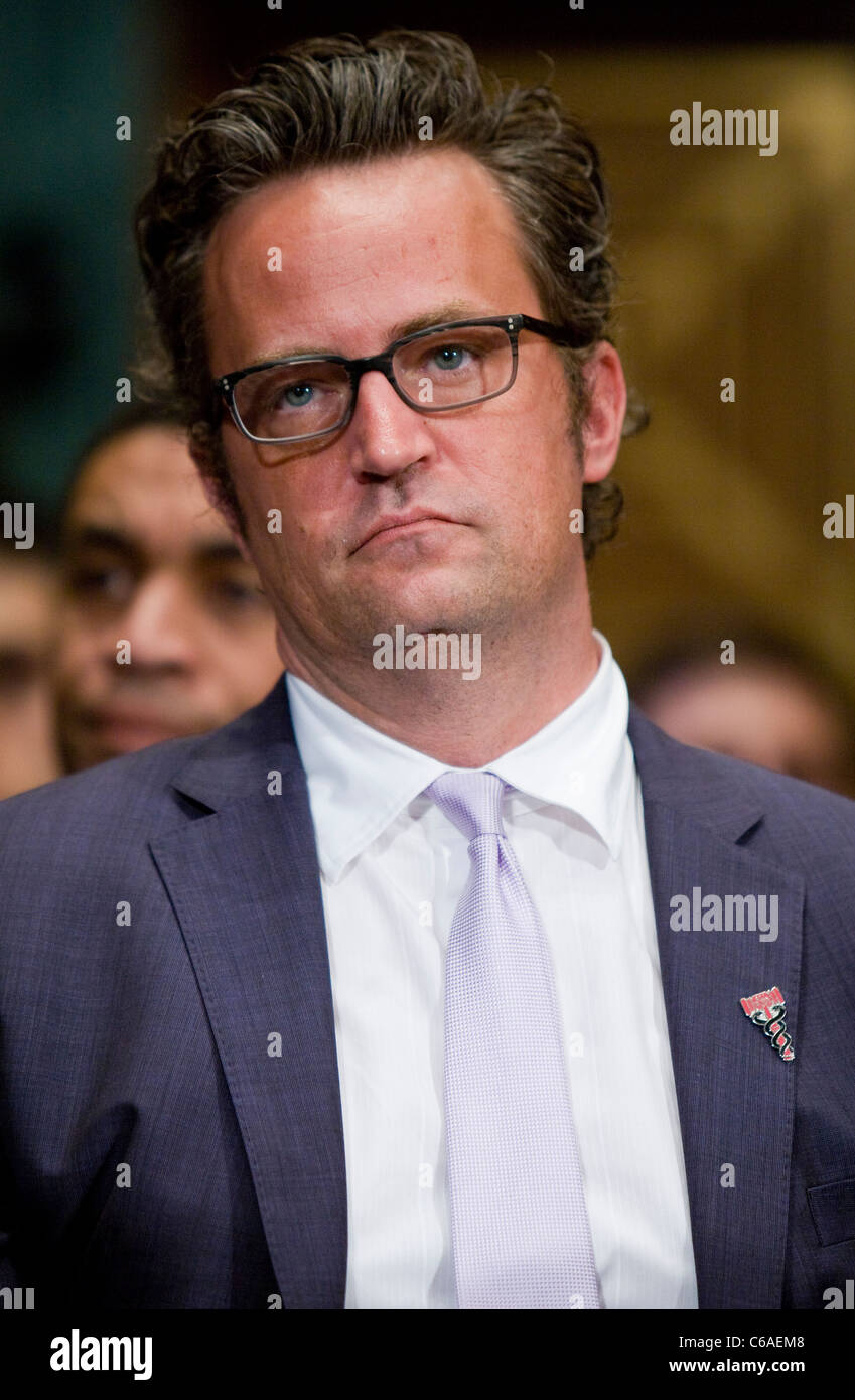 L'acteur Matthew Perry. Photo Stock