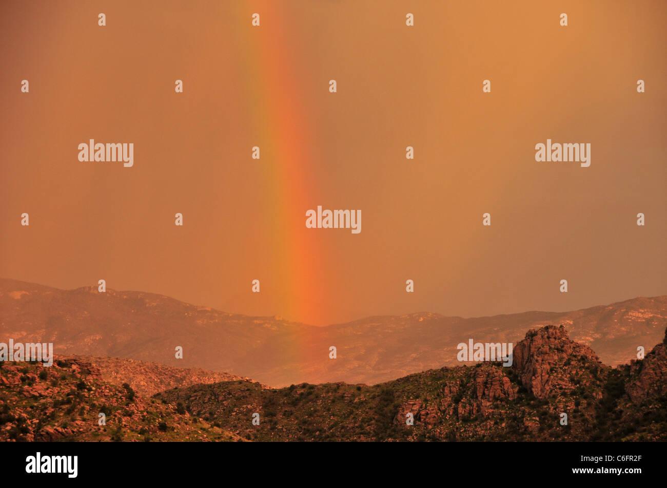 Un arc-en-ciel au coucher du soleil au cours d'une tempête de mousson dans les montagnes Santa Catalina, Coronado National Forest, Tucson, Arizona, USA. Banque D'Images
