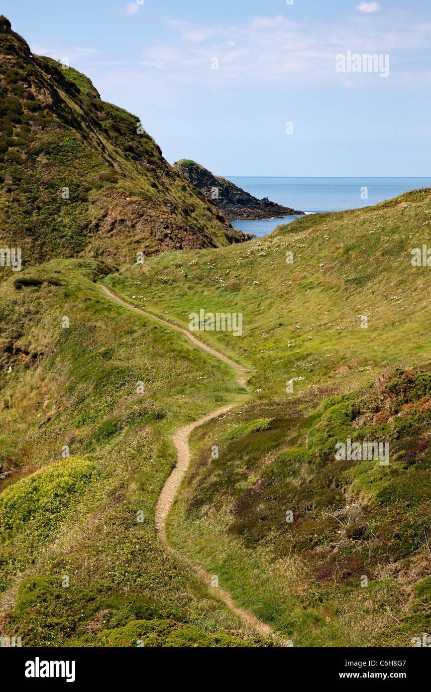 L'article du south west coast path sur le Cornwall Devon frontière près de Hartland Quay en direction Photo Stock