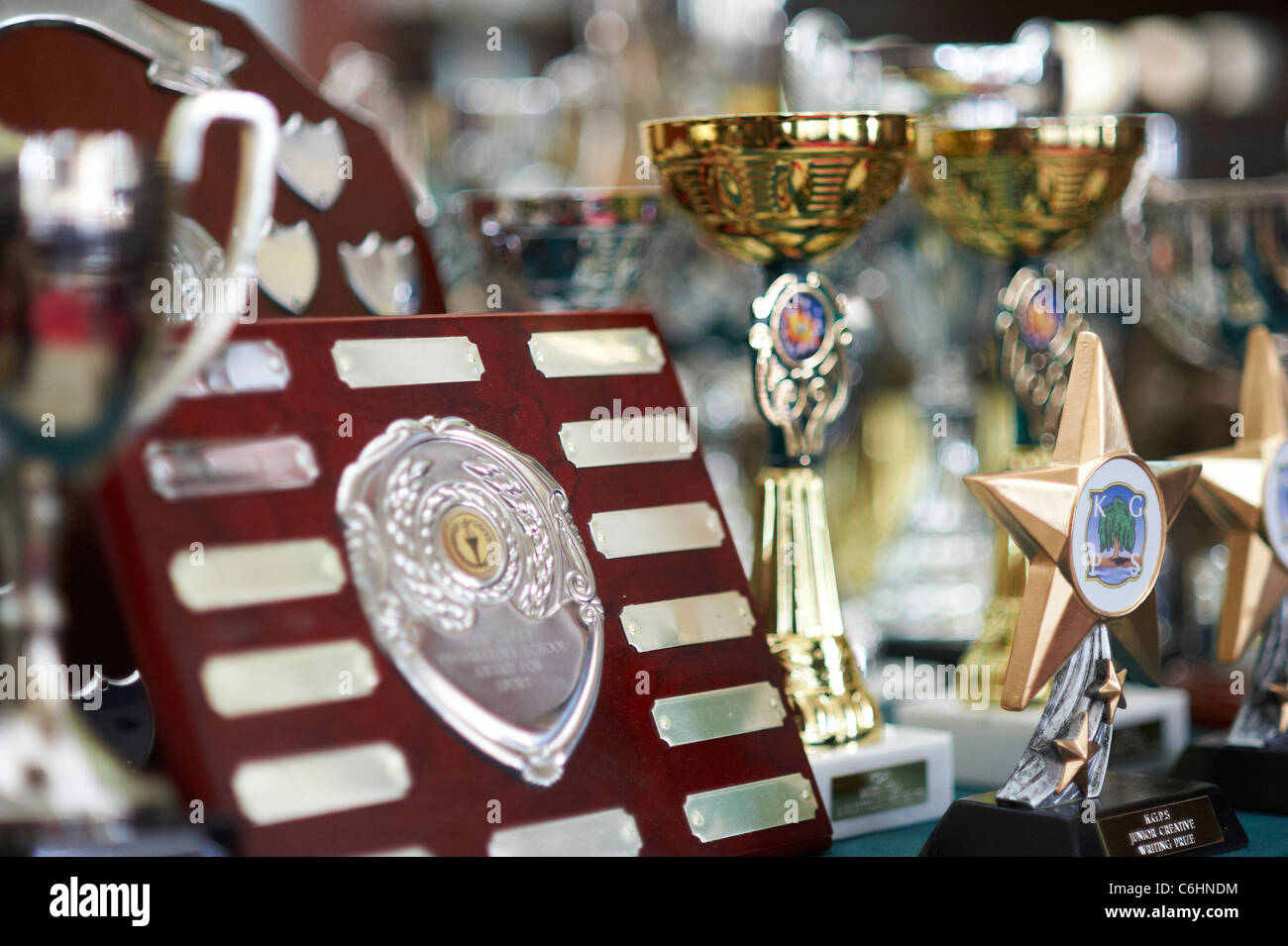 Trophy Photo Stock