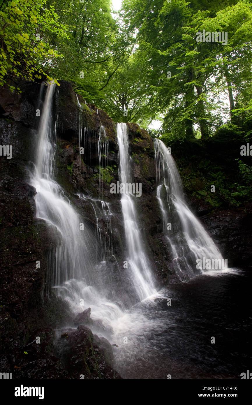 Cascade de Glenariff Forest Park Banque D'Images