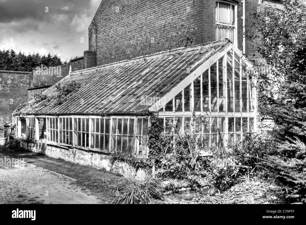 Louth, Lincolnshire, Angleterre, ancienne serre victorienne en ruine et envahi par la grande structure massive laissés Banque D'Images