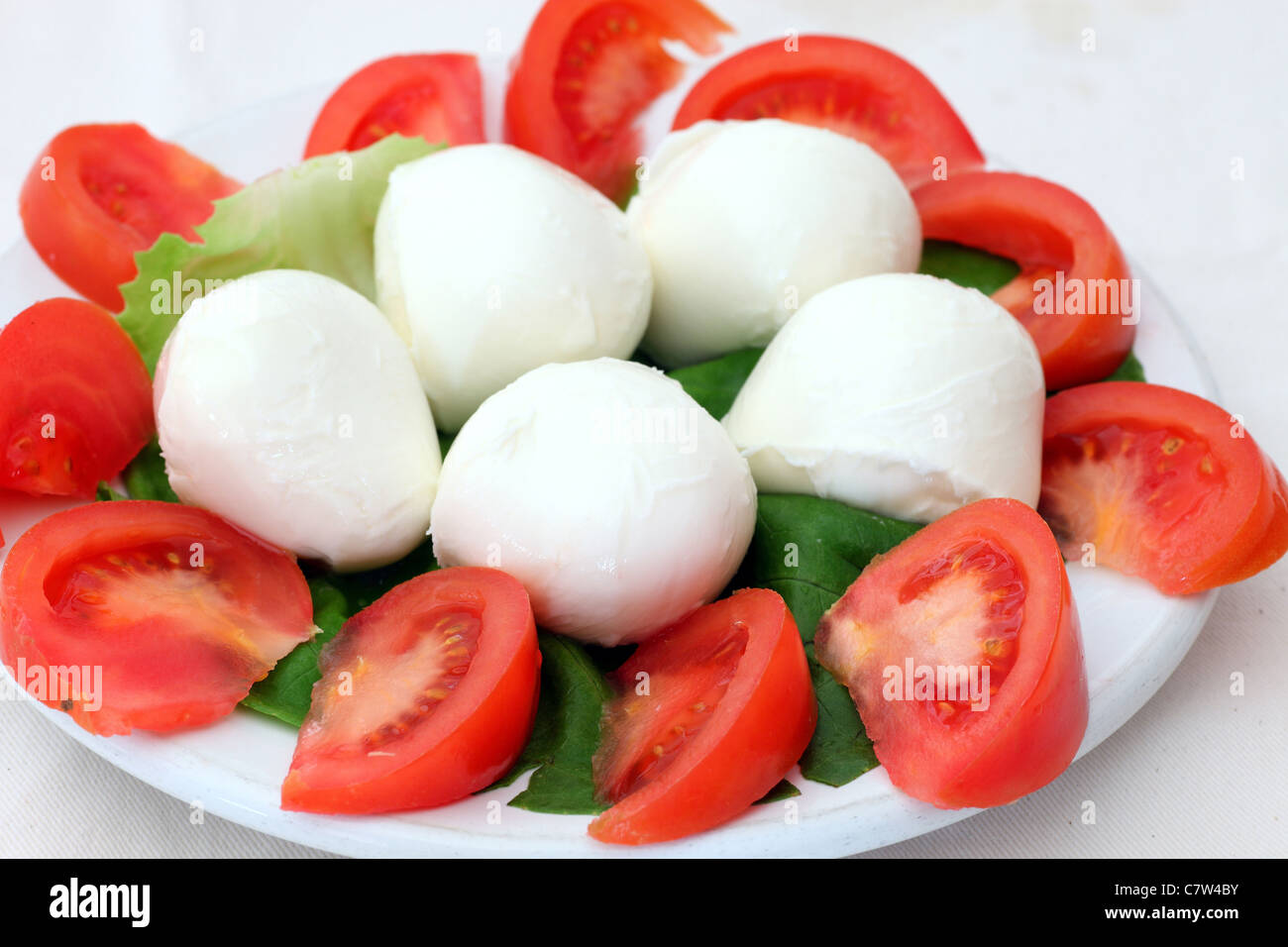 Salade de tomates et mozzarella de bufflonne Photo Stock