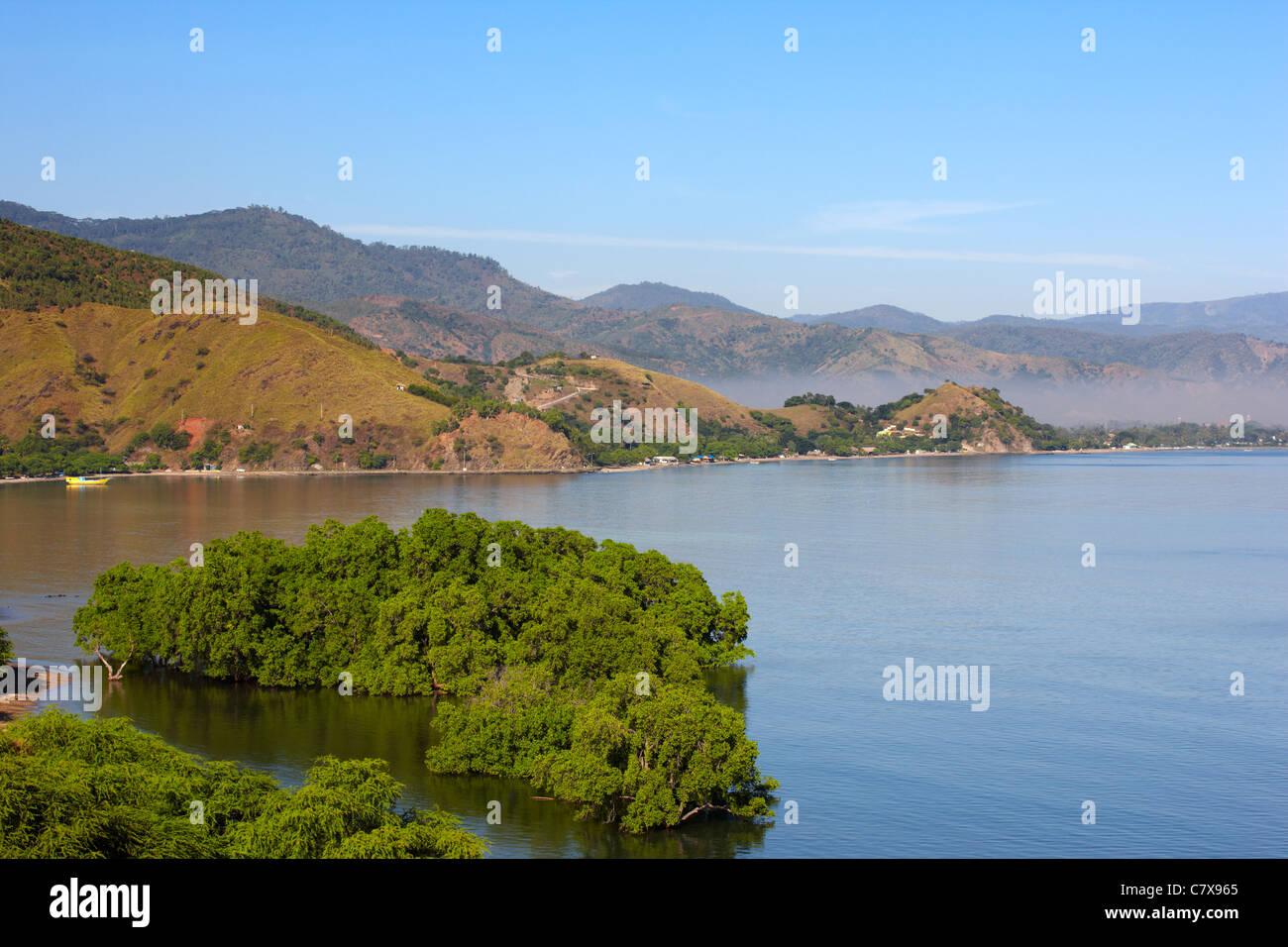 Les mangroves près de Dili, Timor-Leste (Timor oriental), l'Asie Banque D'Images