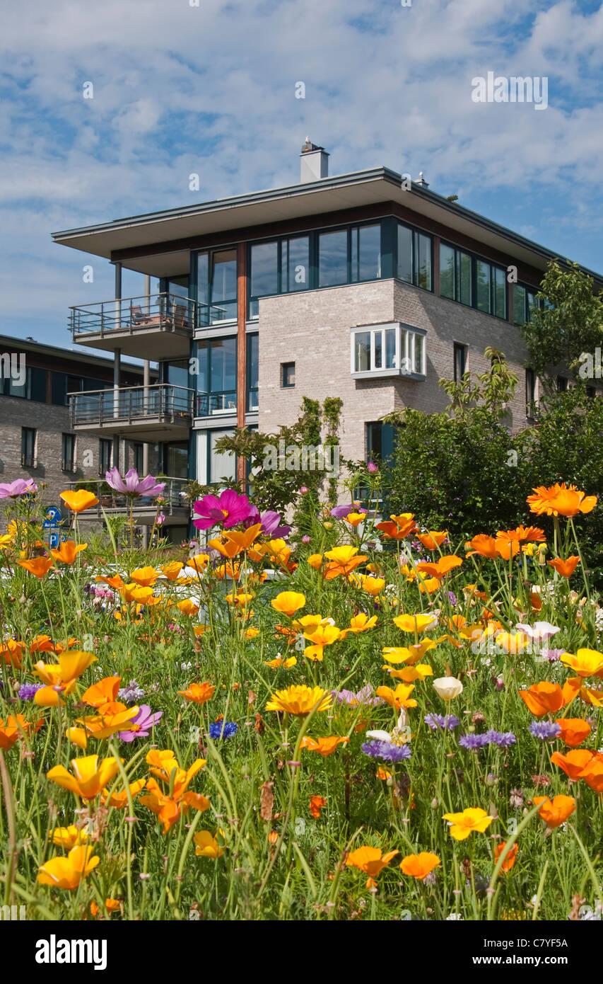 Architecture résidentielle à Kristiansand, Norvège Photo Stock