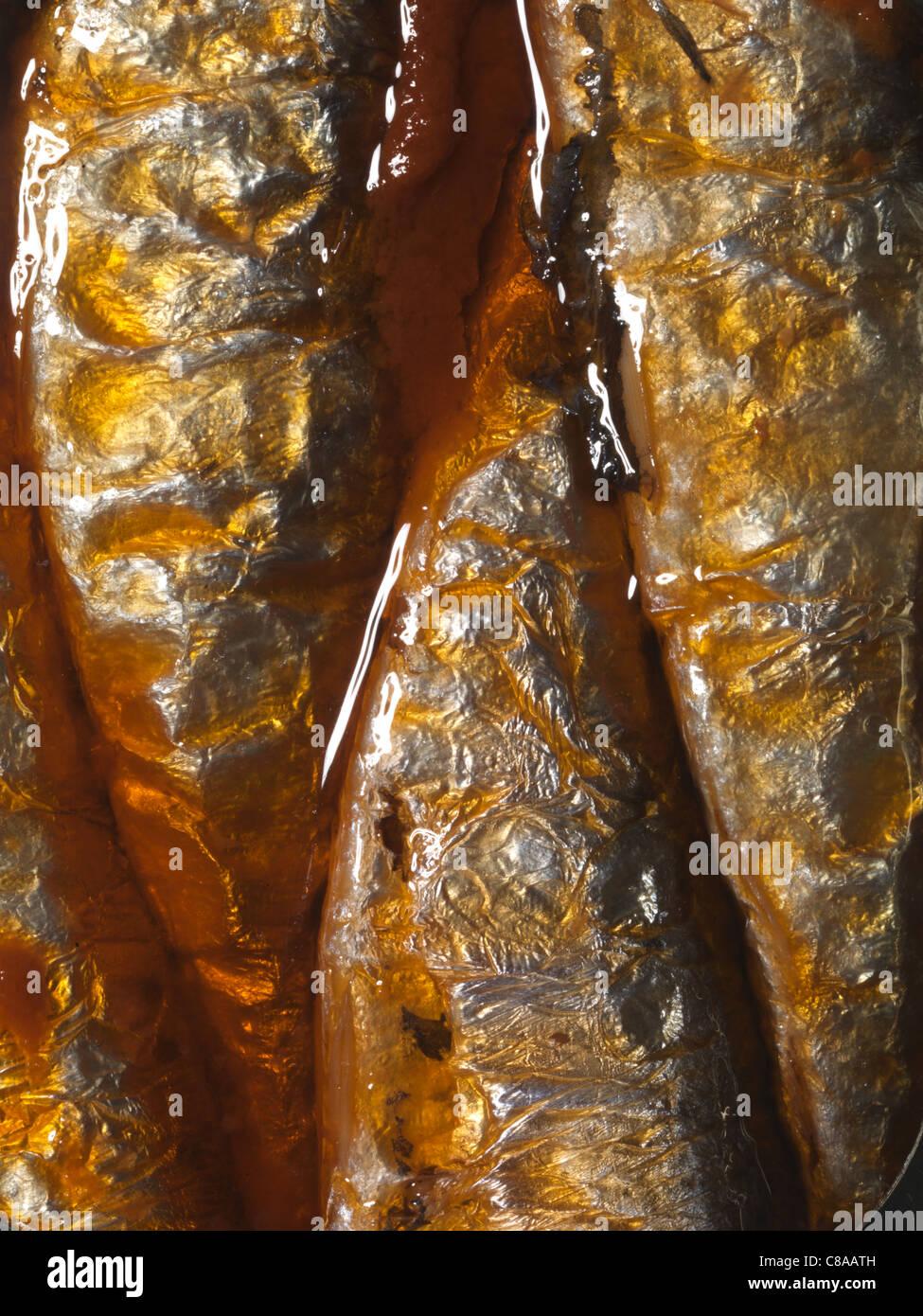 Les sardines avec le poivre, la tomate et l'ail Photo Stock