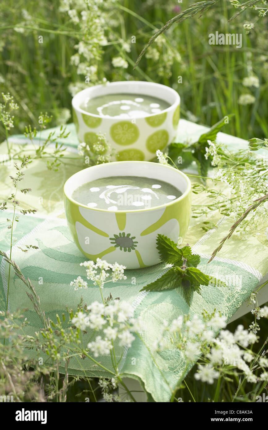 Soupe d'ortie Photo Stock