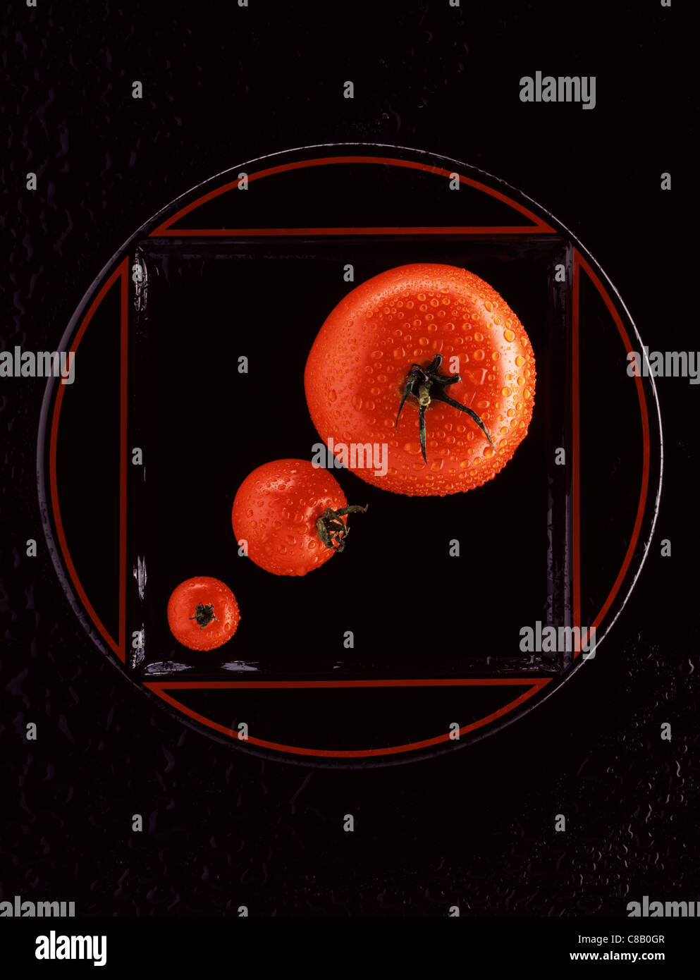 Les tomates Photo Stock