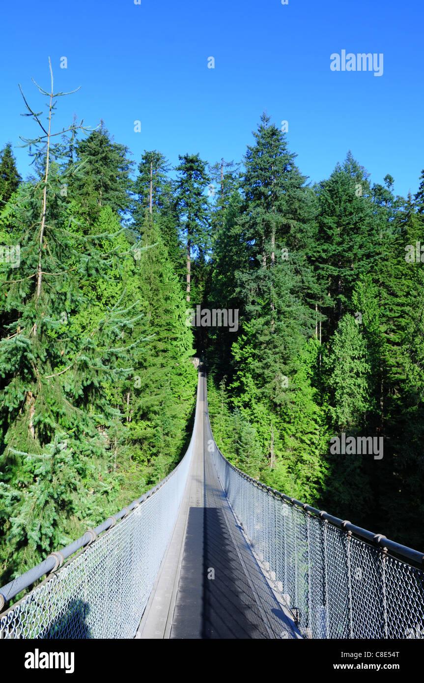 Le pont suspendu de Capilano à Vancouver, Canada Photo Stock