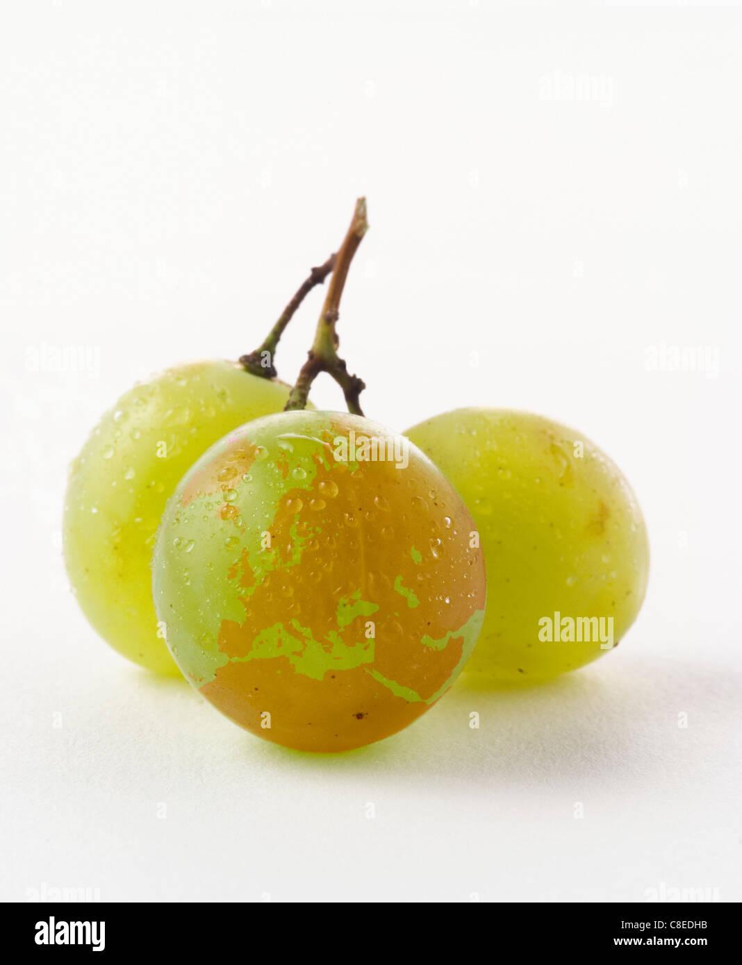 Continent européen dessiné sur un raisin blanc Photo Stock