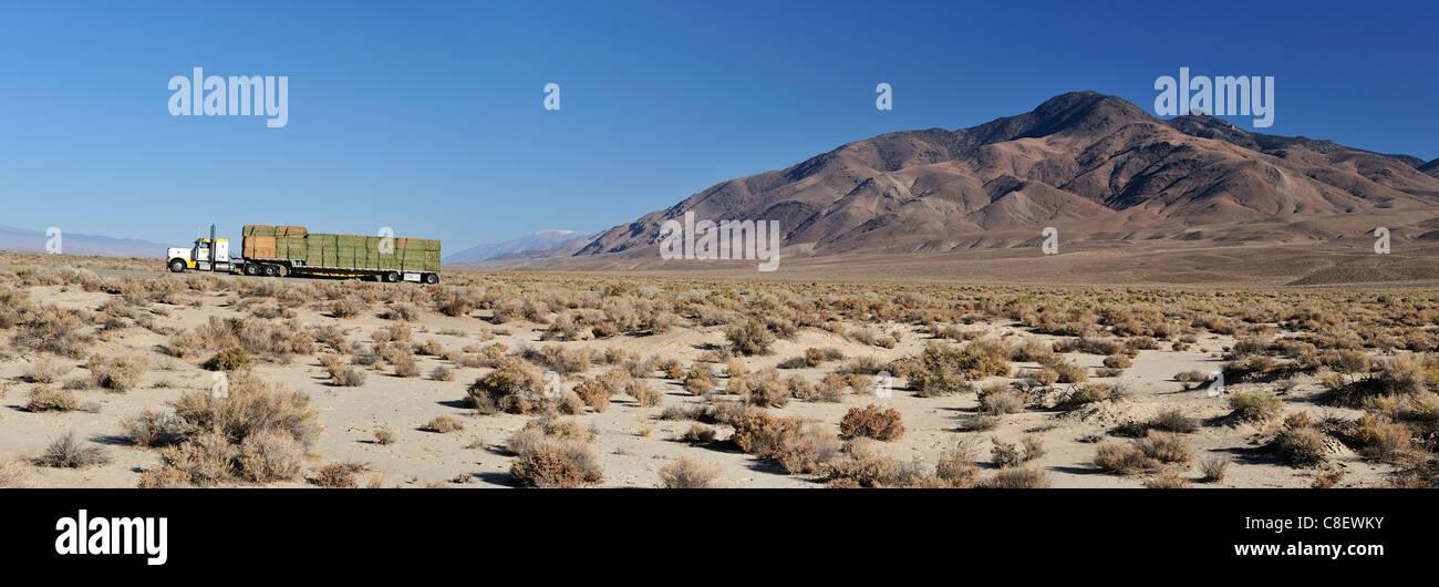 Camion, bottes de paille, désert, buissons, transports, près de Big Pine, Californie, USA, United States, Photo Stock