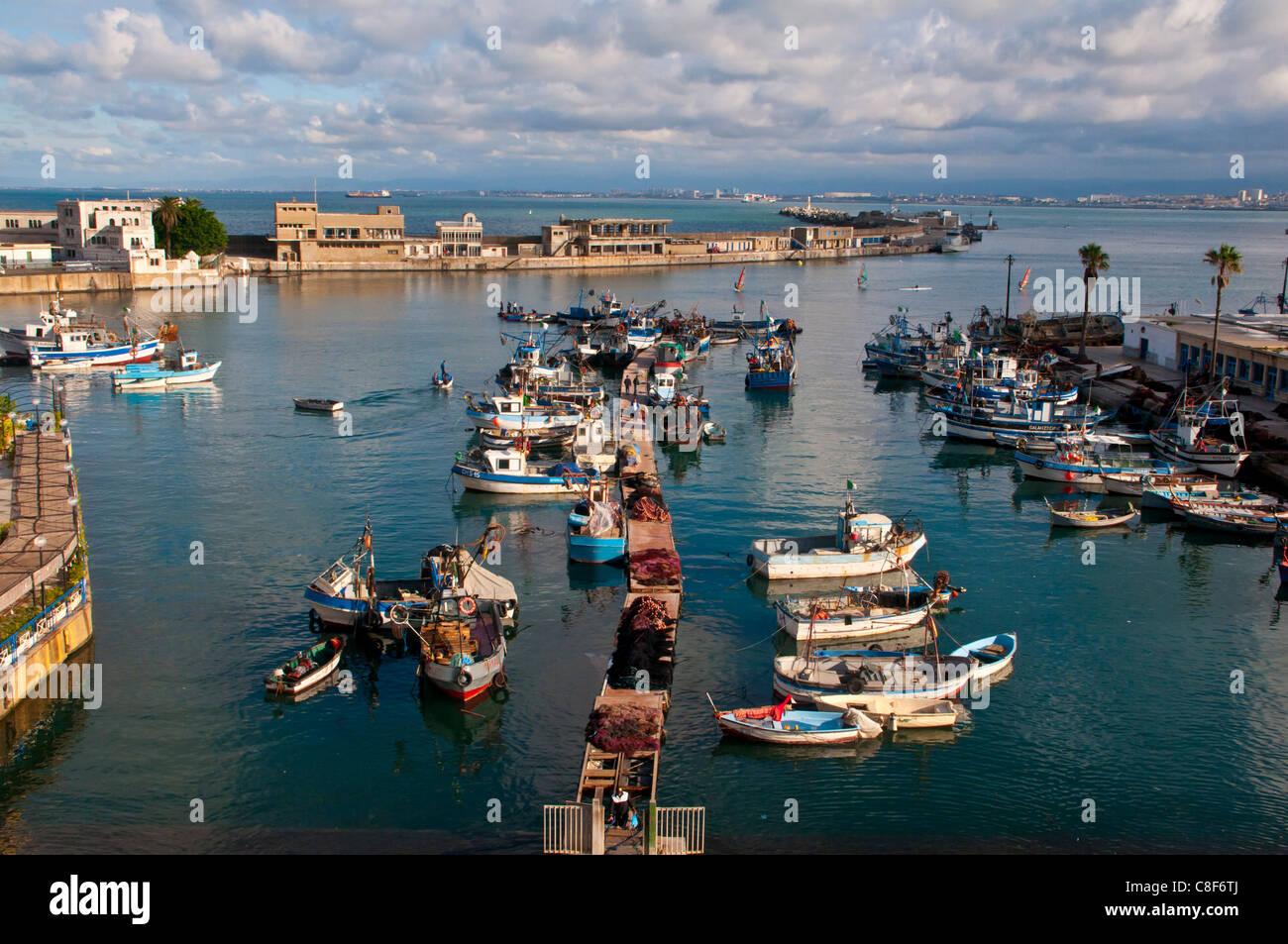Le port d'Alger, Algérie, Afrique du Nord Photo Stock