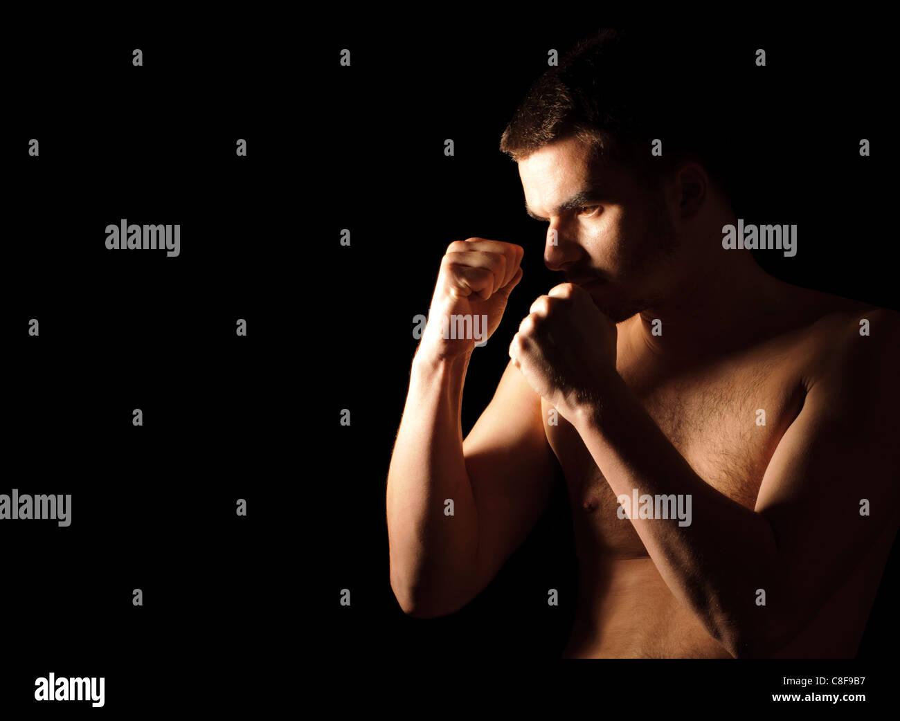 Boxer Photo Stock