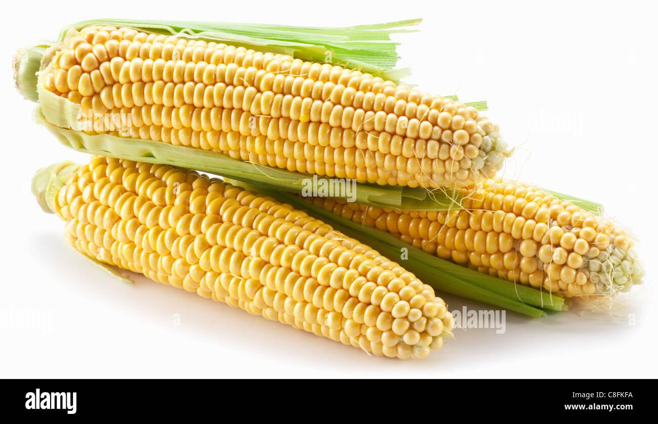 Le maïs sur un fond blanc Photo Stock
