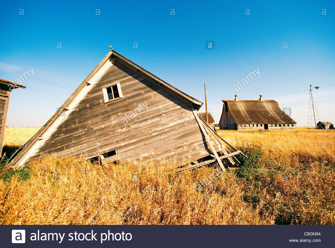Une ferme se détériore lentement abandonner au milieu d'un champ de blé. Photo Stock