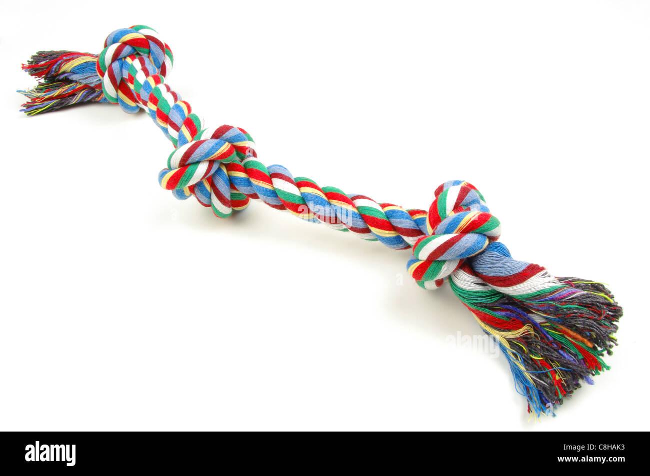 jouet pour chien corde Photo Stock