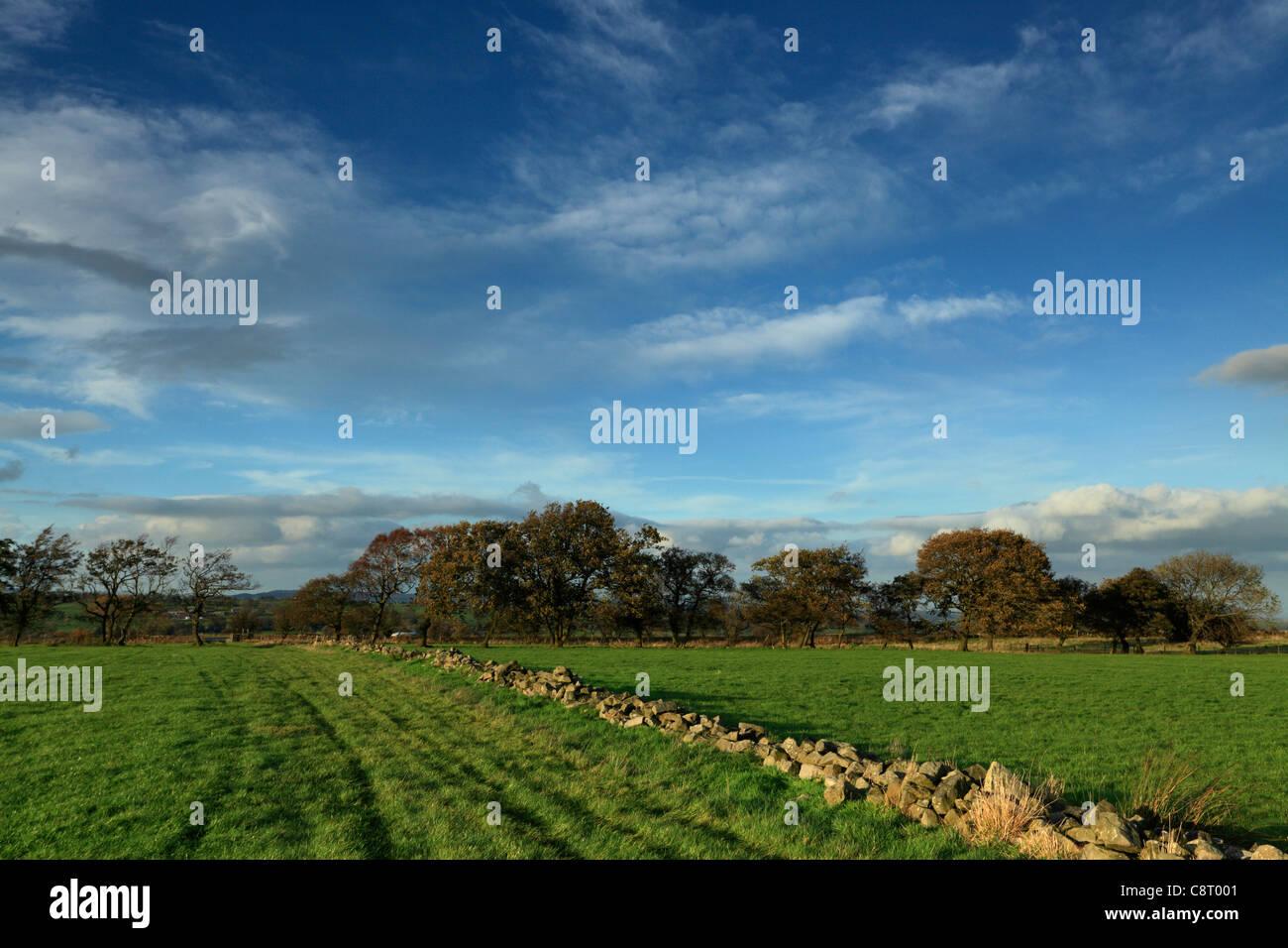 Un mur de pierre le long Knabs Ridge près de Harrogate dans le Yorkshire Photo Stock