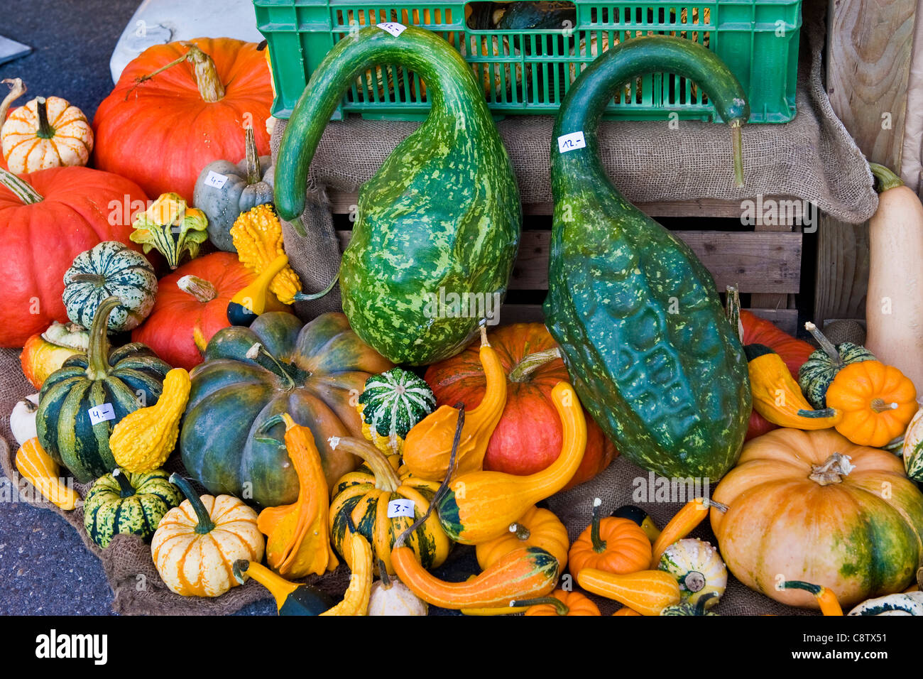 citrouilles Photo Stock