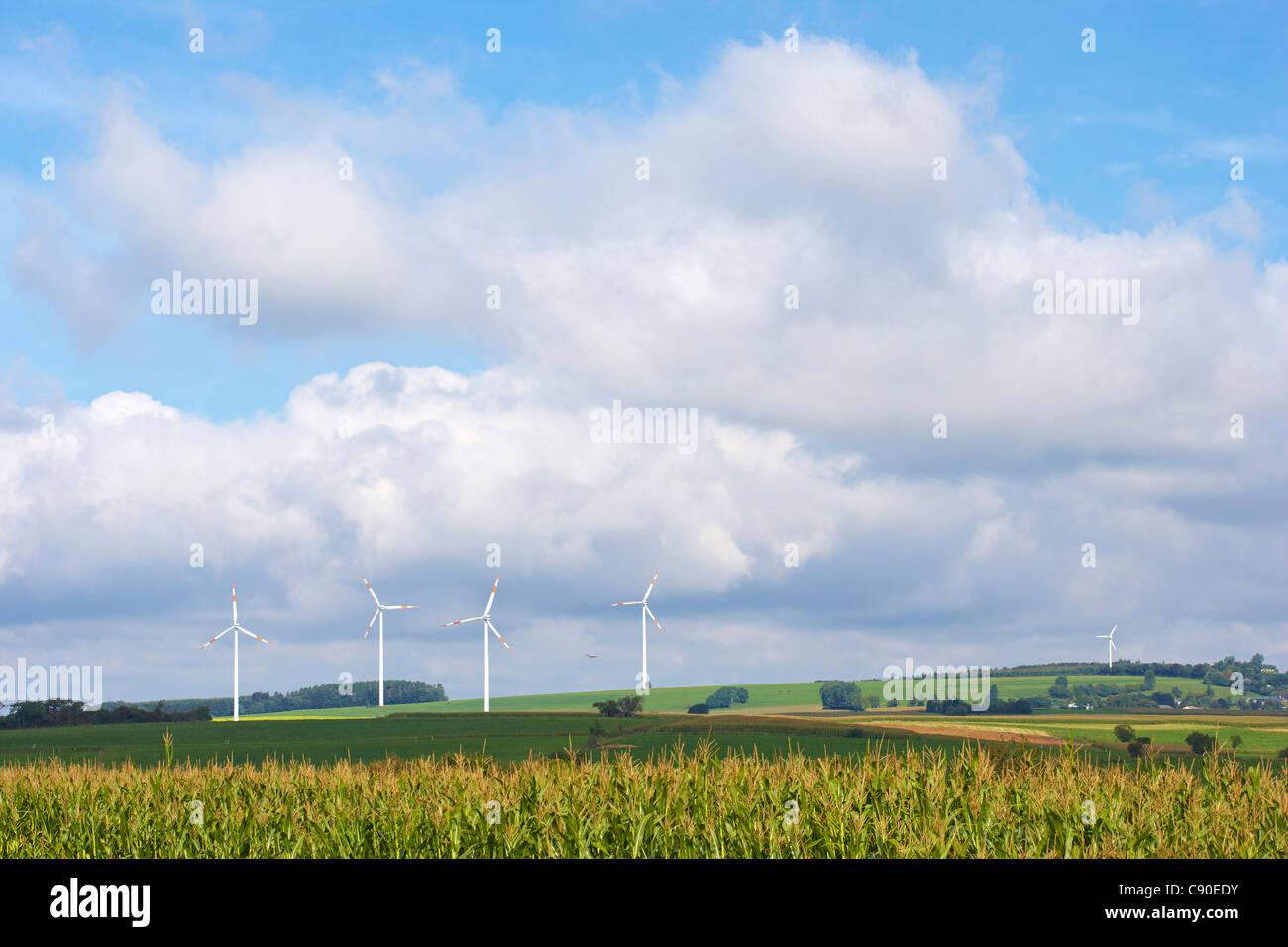 L'énergie éolienne près de Seinsfeld, Eifel, Rhénanie-Palatinat, Allemagne, Europe Photo Stock