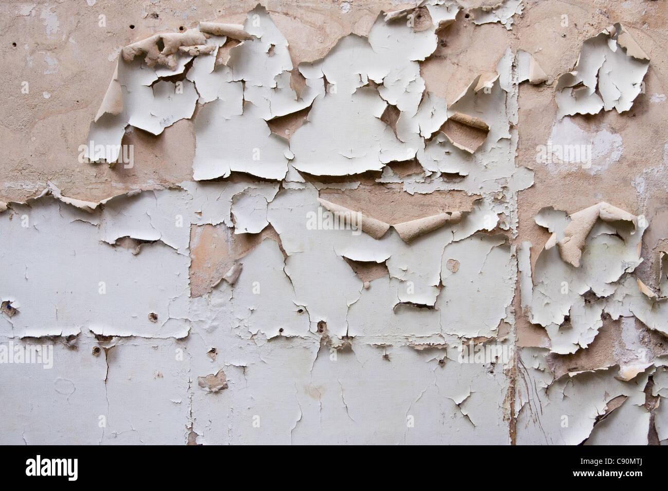 écaille De Peinture Mur De Plâtre Dans Un Bâtiment Abandonné Banque